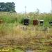 2009_06_28 Philippeville 12
