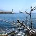2009_06_06 074 Bastia