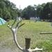 2009_07_12 Feschaux 24 Domaine de Massembre