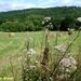2009_07_12 Feschaux 36