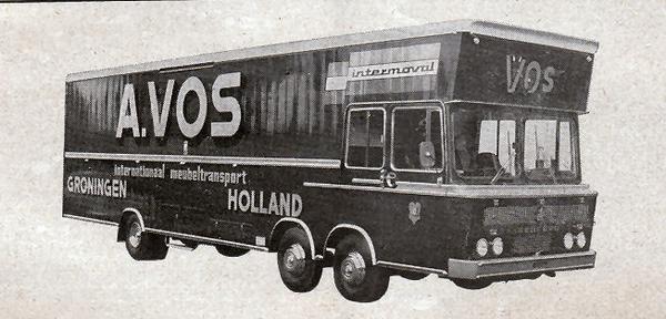 Vos - Groningen