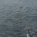 20070604-Watersportbaan vissen 026