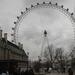 The London Eye aan de Theems.