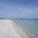Mallorca - strand van Son Real 1