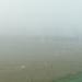 Mist 10-08-2009 004 (3)