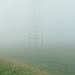 Mist 10-08-2009 004 (7)