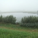 Mist 10-08-2009 004 (10)