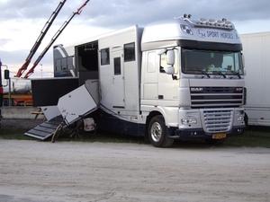 LM Horses - Tolbert