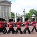 1A9 Buckingham Palace _Aflossing van de wacht
