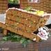 2009_08_02 Romedenne fête de la brouette 13