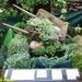 2009_08_02 Romedenne fête de la brouette 17
