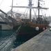 met de boot walvissen zoeken