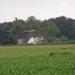 2006-07-03  BURCHT D 001