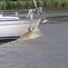 2006-07-03  BURCHT D 033