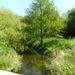 2008-05-024 BURG 2008 par 2 019