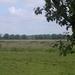 2009-06-29 burg Minolta 007