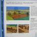 2009-06-29 burg Minolta 012