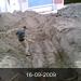 16-09-2009   6