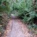 2009_09_20 Kerksken 19